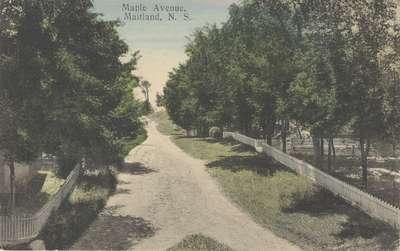 Maple Avenue, Maitland, N.S.