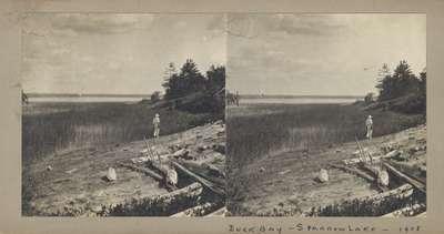 Buck Bay, Sparrow Lake