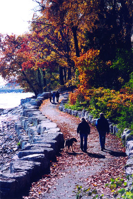 The Lakefront in the Fall