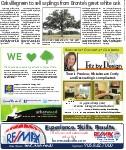 Oakvillegreen to sell saplings from Bronte's great white oak