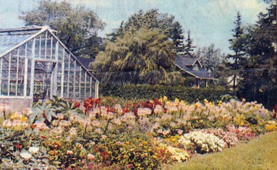 Perkins Family - Greenhouse