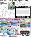 Animal lover felt compelled to help runaway dog