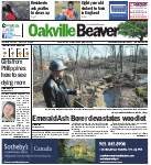 Oakville Beaver, 25 Apr 2013