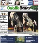 Oakville Beaver, 11 Jul 2013