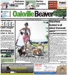Oakville Beaver, 17 Jul 2013