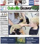 Oakville Beaver8 Aug 2013