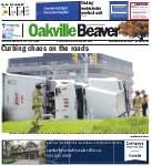 Oakville Beaver, 14 Nov 2013