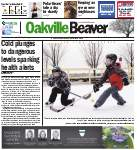 Oakville Beaver, 8 Jan 2015