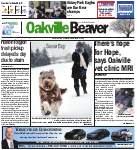 Oakville Beaver, 5 Feb 2015