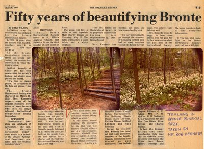 Fifty years of beautifying Bronte