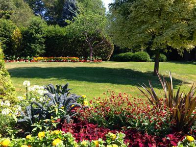 Bloom in Gairloch Gardens