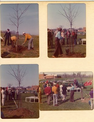 Bronte Horticultural Society Tree Planting (1980)