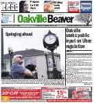 Oakville Beaver, 11 Mar 2016