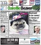 Oakville Beaver, 31 Mar 2016