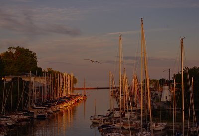 Oakville Marina at Sunset