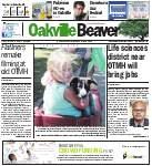 Oakville Beaver, 29 Jul 2016