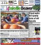 Oakville Beaver, 7 Oct 2016