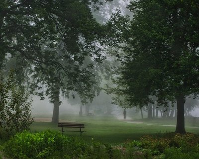 Coronation Fog