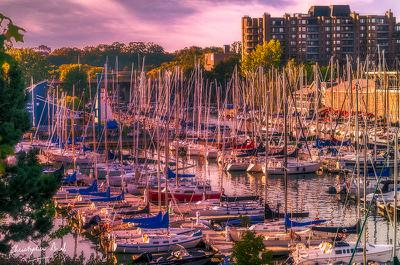 Golden Hour at Oakville Harbour