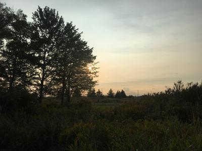 Bronte Creek Provincial Park Sunset