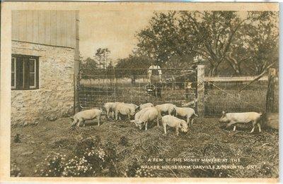 Walker House Farm Postcard