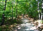 Oakville Trail